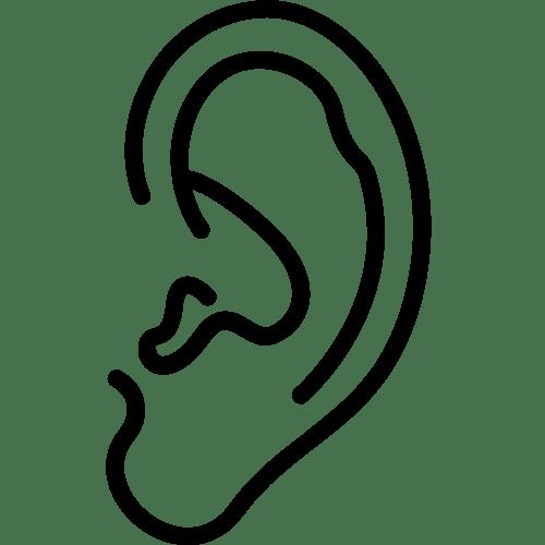 Forma urechii - mian xiang