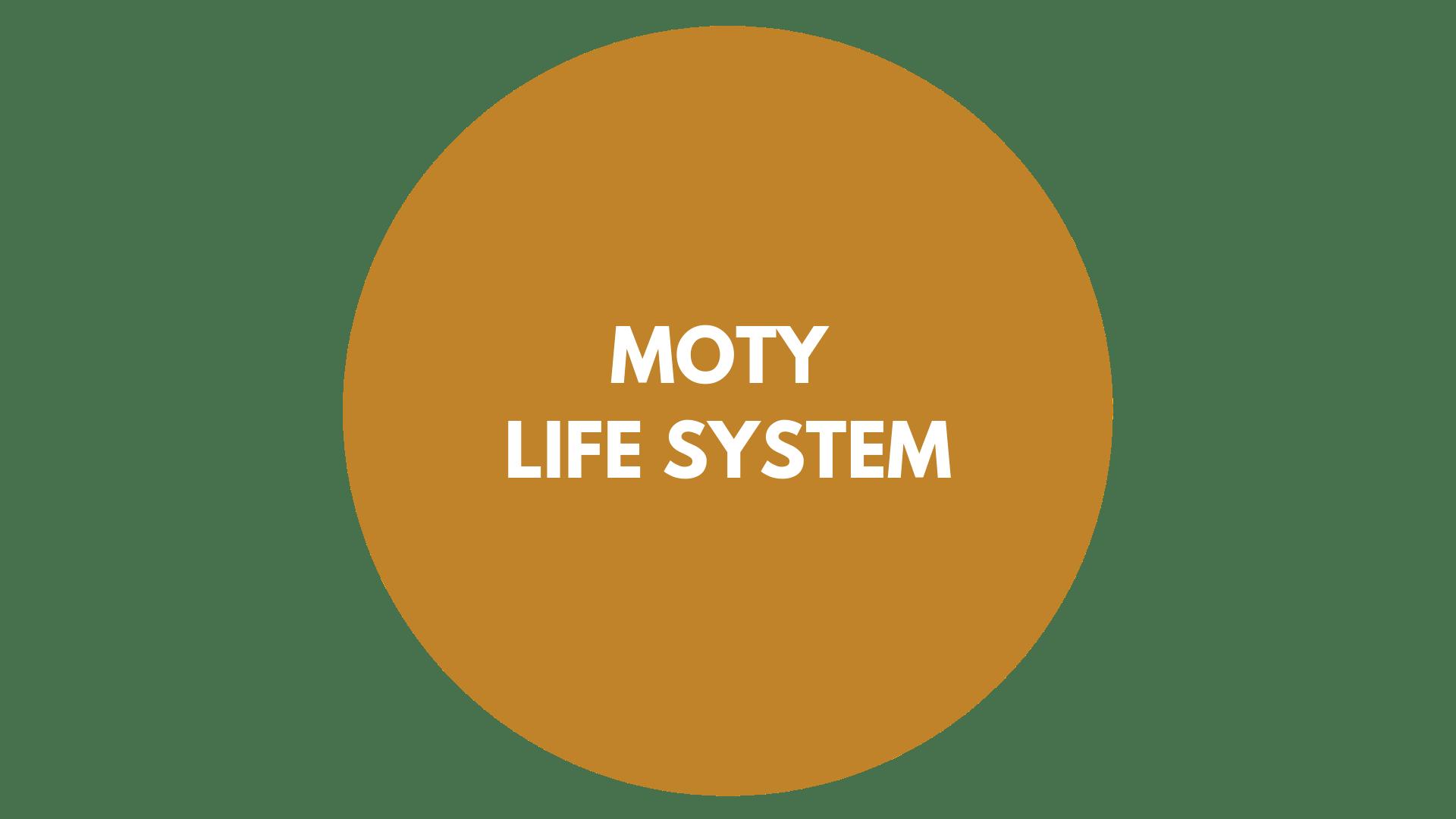 Prezentare Servicii Moty Consulting-3