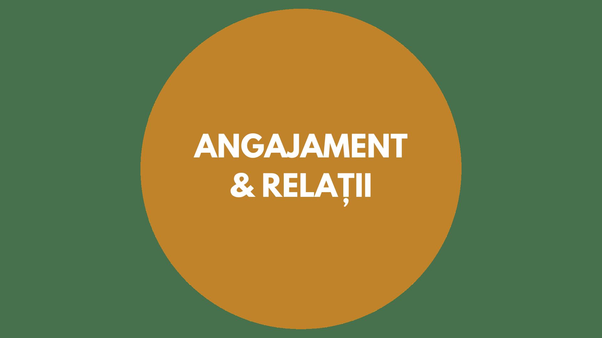 Prezentare Servicii Moty Consulting-5